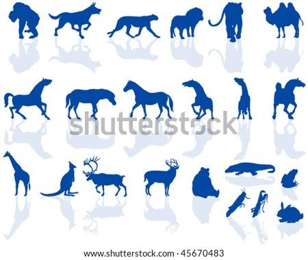 Animal silhouettes - stock vector