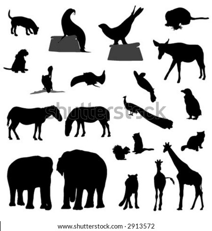 animal silhouettes (vector)