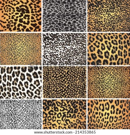Animal skin fur vector pack leopard zebra - stock vector