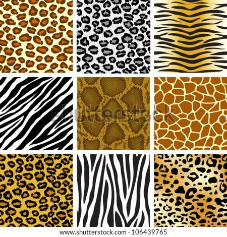 animal skin seamless pattern set - stock vector
