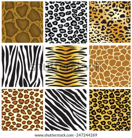 animal skin seamless pattern set, vector illustration - stock vector