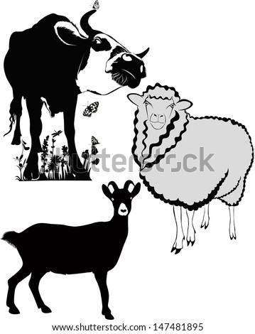 animals cow sheep goat - stock vector