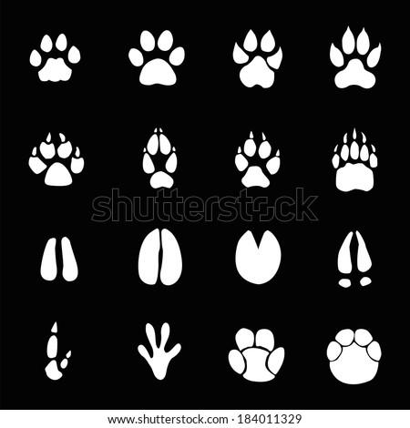 Animals footprints - stock vector