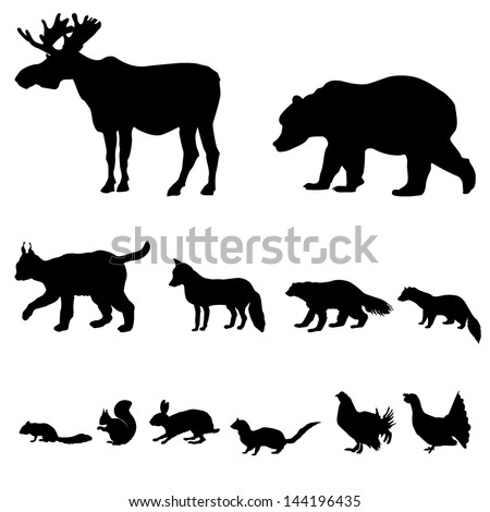 Animals living in taiga. Vector set of silhouette isolated on white background. - stock vector