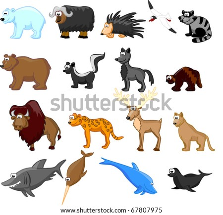 Animals of North America, including grizzly bears, caribou, polar bears, raccoons, bison, porcupine, mountain lion, coyote, skunk, wolverine, seals, jaguar, dolphin, shark, bowhead whale eps 10