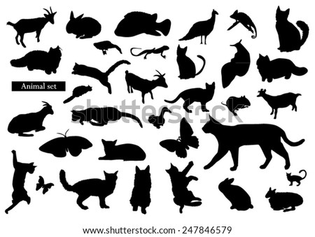 Animals silhouettes - stock vector