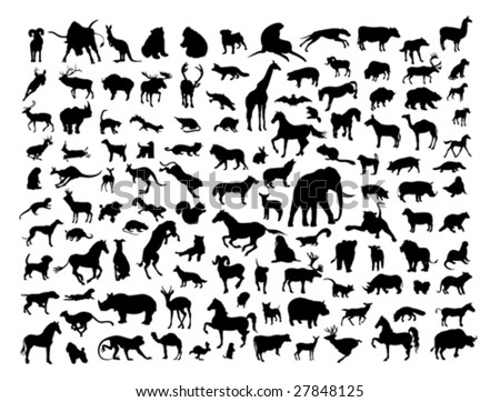 Animals silhouettes isolated on white. Vector illustration. - stock vector