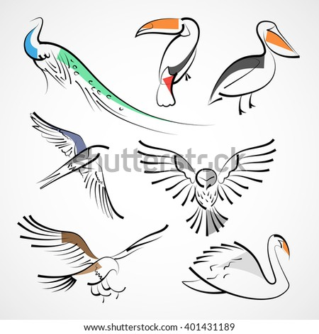 Animals, species of birds: peacock, toucan, pelican, swallow, owl, hawk, falcon, eagle, swan. Isolated on white background. Design of vector illustration. - stock vector