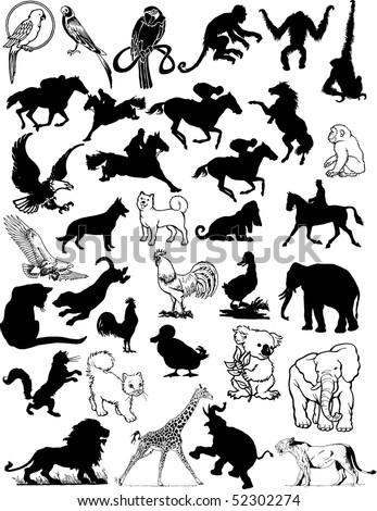 Animals vector - stock vector