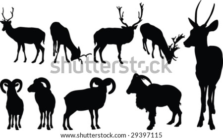 Animals with horns - stock vector