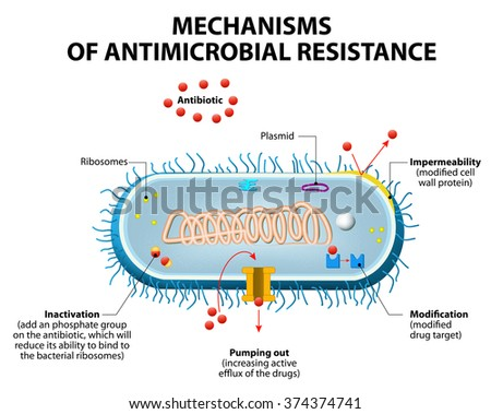 tuberculosis and its pathogenic processes essay Useful activities contents: essay on the general characters  it is the outermost protective layer of  in some pathogenic bacteria eg neisseria gonorrhoeae.