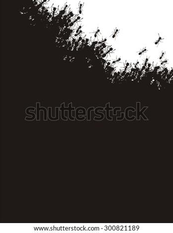Ants background - stock vector