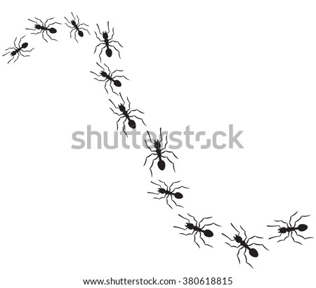 ants traveling in a row (ants marching on path) - stock vector