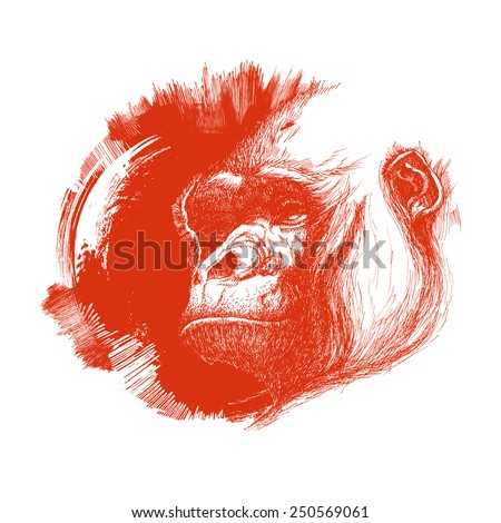 Ape head logo in orange and white. Vector illustration - stock vector