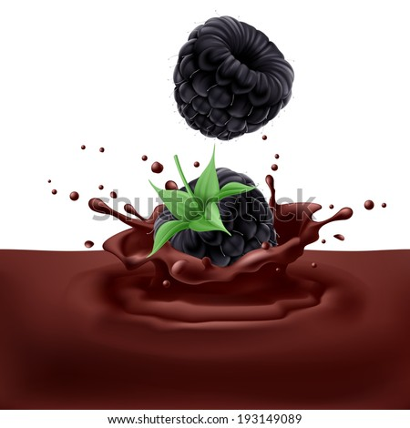 Appetizing blackberries dipping into chocolate with splashes - stock vector