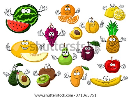 Appetizing ripe tropical and garden fruits with watermelon, grape and melon,  avocado and kiwi, pear and orange, apricot and plum, mango and apple, banana, lemon and pineapple - stock vector