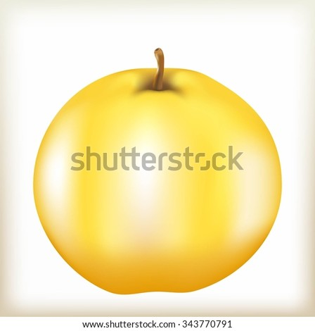 apple of yellow color, mature juicy fruit, apple-tree fruit with a fruit stem, a natural food from a tree, tasty and healthy food, a quince the isolated fruit,