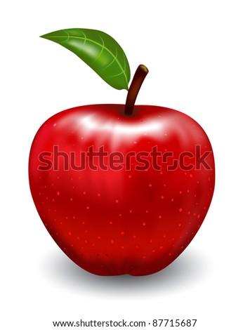 Apple. Vector illustration - stock vector
