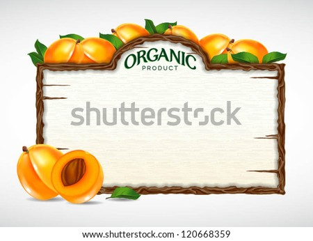 apricot menu board - stock vector