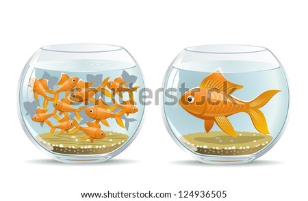 Aquarium comparison. Illustration of the reaction of different participants in the same conditions. - stock vector