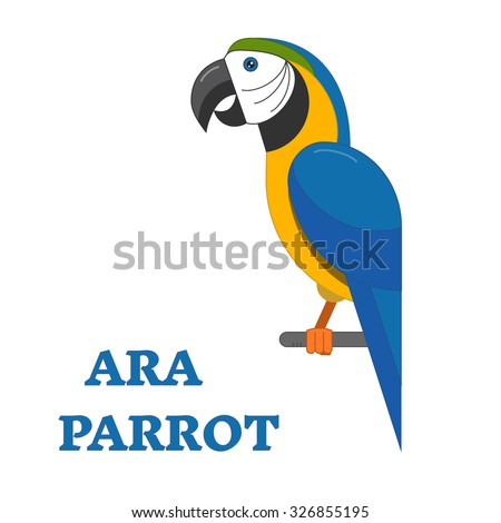 Ara parrot exotic bird line art icon. Birdwatching popular bird species collection. Flat design geometric tropical parrot colored in bright vivid colors. Simple and cute style. Geometric bird. - stock vector