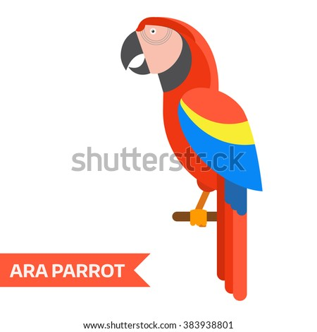 Ara parrot. Red ara vector illustration. Exotic ara bird in flat design. Popular bird species collection. Geometrical ara isolated on white background. Tropical cartoon ara. - stock vector