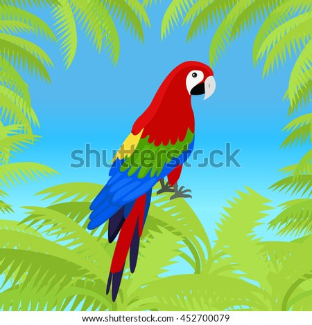 Ara parrot vector frame. Birds of Amazonian forests in flat design illustration. Fauna of South America. Beautiful Ara parrots for icons, posters, childrens books illustrating. Isolated on white. - stock vector