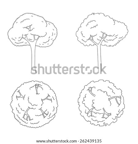 architectural trees set for drawing on white background - Architecture Drawing Of Trees