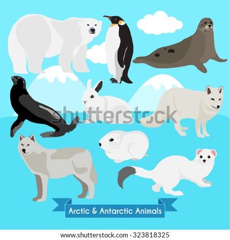 Arctic and Antarctic Animals Vector Design illustration - stock vector