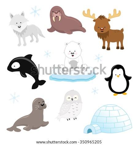 Arctic Animal Set - stock vector