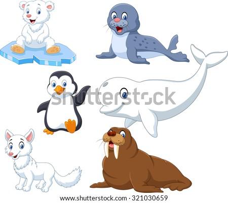 Arctics animals collection set  - stock vector
