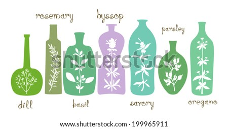 Aromatic herbs essentials. Different bottles with silhouettes of aromatic plants. Abstract extracts with herbs. Hand drawn text. Design elements for cooking ideas. Vector is grouped EPS8. - stock vector