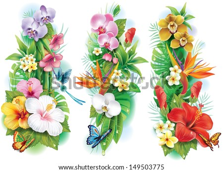Arrangement from tropical flowers and leaves - stock vector