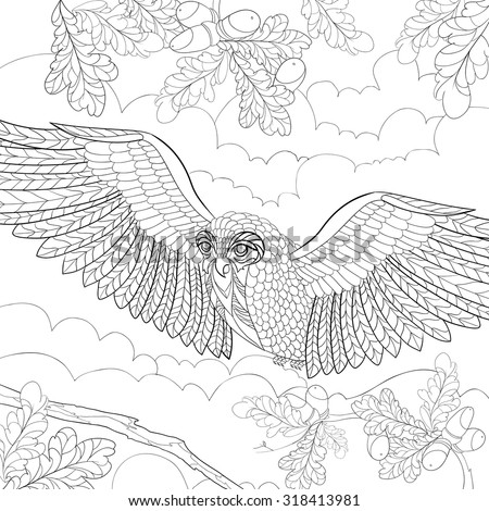 Art And Color Therapy Anti Stress An Antistress Coloring Book Wise Owl Flora