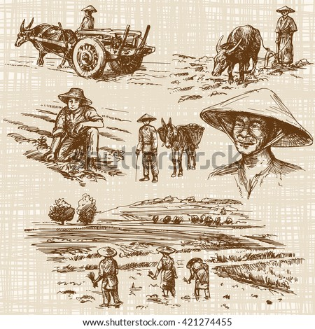 Asian farmers working on Field. Hand drawn illustration. Rice harvest. - stock vector