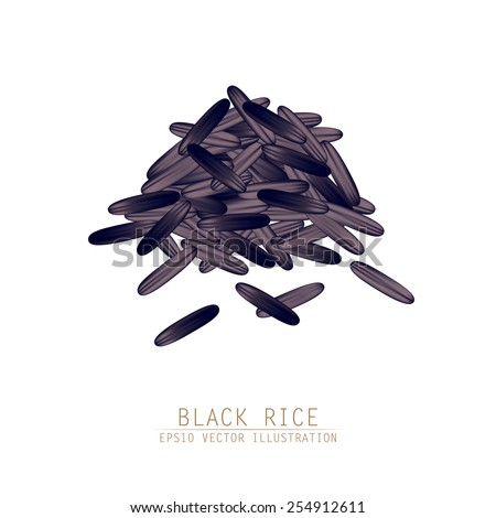 Asian traditional food of Japan, Korea and China. Vector illustration of black rice pile.  - stock vector