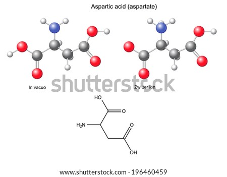 Aspartic acid (Asp) - chemical structural formula and models, amino acid, in vacuo, zwitterion, 2D and 3D illustration, balls and sticks, isolated on white background, vector, eps8 - stock vector