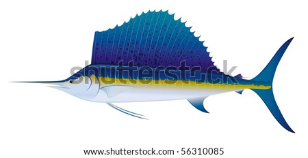 """Atlantic Sailfish (Istiophorus albicans) saltwater fish.  """"Full compatible. Created with gradients."""" - stock vector"""
