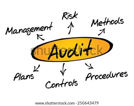 Audit diagram process, business concept - stock vector