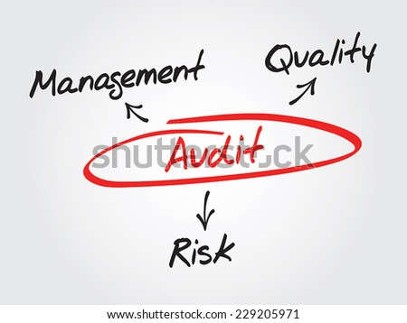 Audit process vector concept diagram, Management, Quality, Risk - stock vector