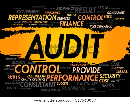 AUDIT word cloud, business concept