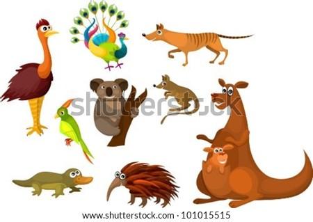 Australian animals - stock vector