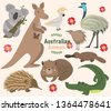 australian animals   vector set....