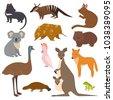 australian wild vector animals...