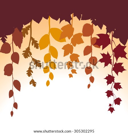 Autumn abstract vector background with leaves silhouette. Autumn leaves at sunset . Foliage vector backdrop