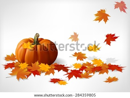 Autumn and pumpkins white background. Vector - stock vector