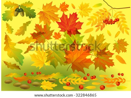 Autumn background. Falling colorful leaves on background of yellow and green. Vector illustration. Can be used for flayers, banners, posters. - stock vector