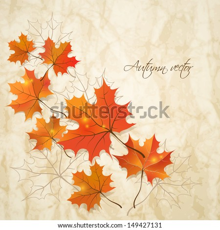 Autumn background. Vector illustration. Eps 10 - stock vector