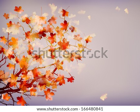 Autumn background with leaves. And also includes EPS 10 vector - stock vector