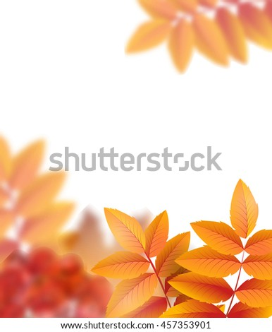 Autumn background with leaves and rowan berries. With place for your text .Template Vector.